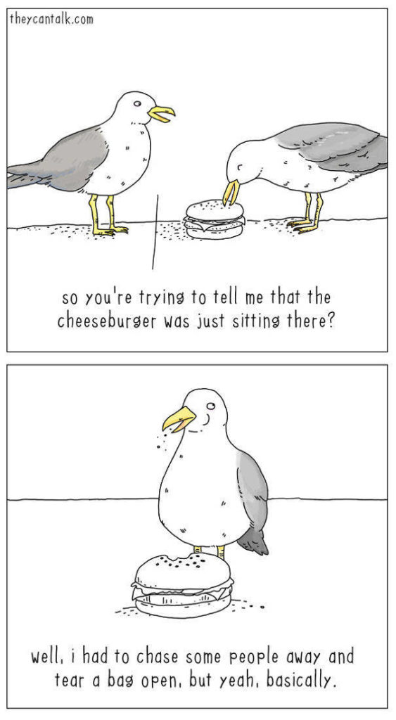 A palpable batch of birb comics